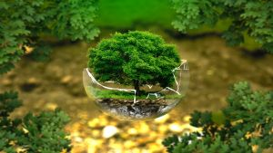 1-environmental-mini